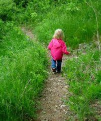 follow_the_path1